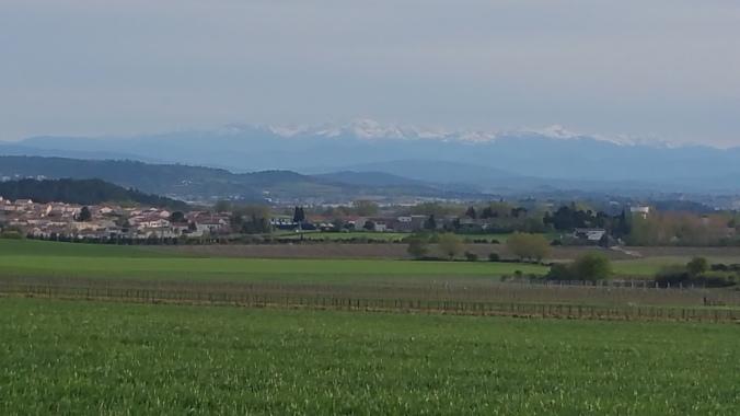berg (2)