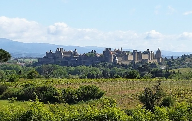 Carcassonne vue totale