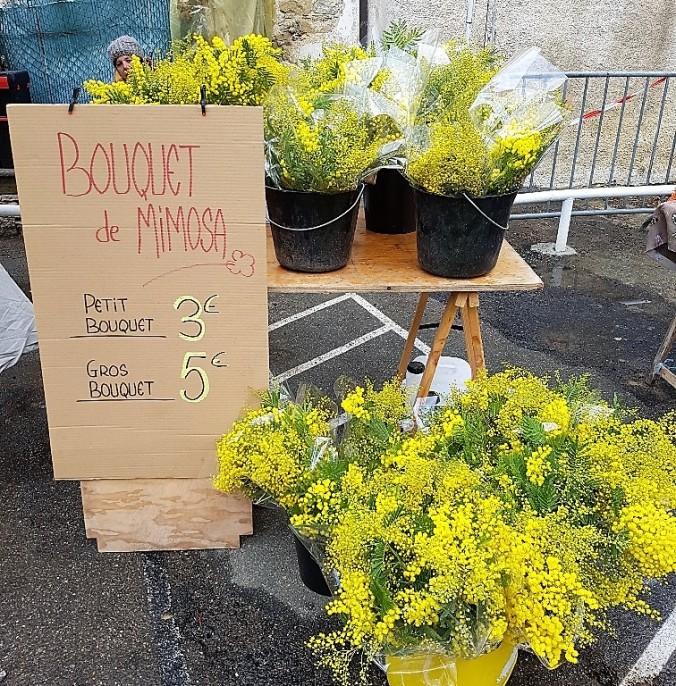 mimosa bukett odlad.jpg